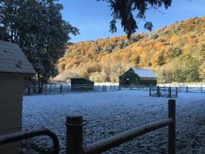First Snow Fall with Fall Foliage in the background